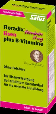 Floradix Eisen Plus B Vitamine (PZN 07764261)