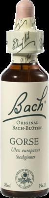 Bachblüten Gorse Tropfen (PZN 00059884)