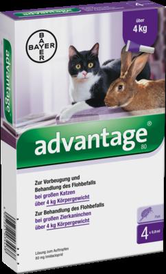 Advantage 80 mg f.gr.Katzen u.gr.Zierkaninchen (PZN 09670104)