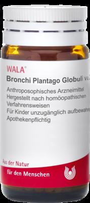 Bronchi Plantago Globuli Velati (PZN 00085350)