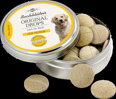 Bachblüten Original Hunde Drops nach Dr.Bach (PZN 10111396)