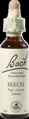 Bachblüten Beech Tropfen (PZN 00046634)