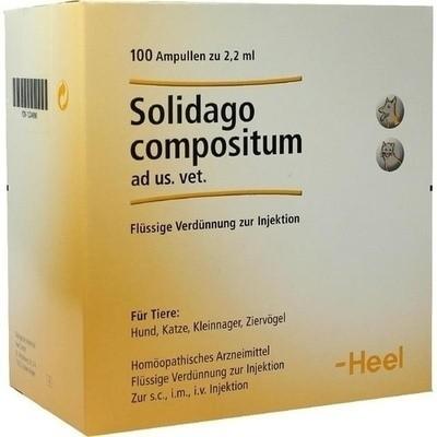 Solidago Compositum Ad Us. Vet. Amp. (PZN 01224090)