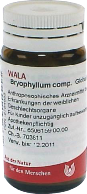 Bryophyllum Comp. (PZN 08784685)