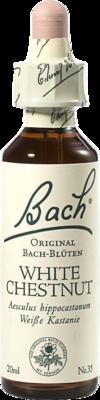 Bachblüten White Chestnut Tropfen (PZN 00170104)