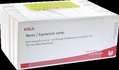 Renes/ Equisetum Comp. Amp. (PZN 02086678)